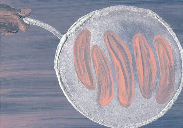 ירון אתר, נקניקיות, 2015, שמן ופיגמנטים על נייר שחור, 33X22 סמ